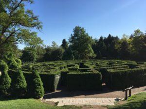 @VanDusen Botanical Garden