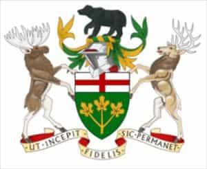 ムース カナダ
