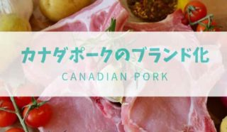 カナダ豚肉-min